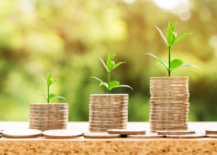 Impact on Start up Investing under Covid 19